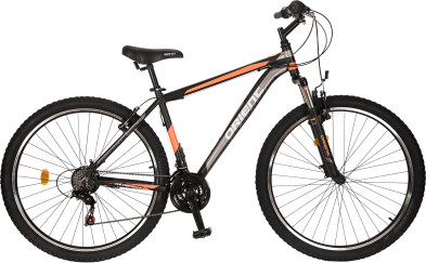 STEED alu 29″  21sp.