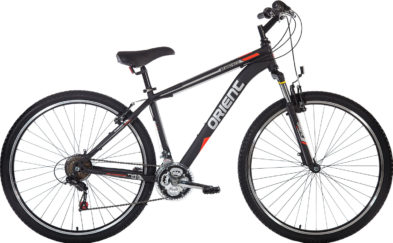STEED ECO 29″  21sp.